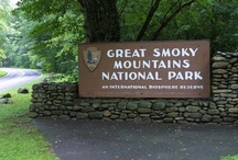 The Great Smoky Mountains / by Pamela Danner