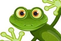 Ranas (Frogs) / by Mariella Bobadilla Pichardo