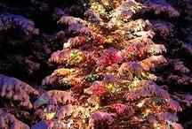 Christmas is my favorite / by Noelle Kristyne