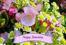 Daily Messages ~ Saturday / by Rita Smith