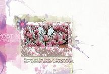 Layouts Pretty Dutch Designs  / Layouts made with products of Pretty Dutch Designs   Buy your Pretty Dutch Products @Digiscrap.nl / by Chantal S