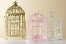 Bird cages / by ayumi matsuoka