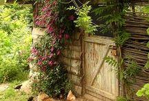 Garden / by Cynthia Fuller