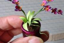 Orquídeas / by Conchi León