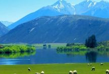 Stunning NZ / by Corene Walker