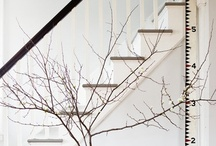 Interior / Exterior / by Alexandra Fiddes