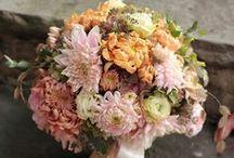 Floral & Garden / by Elaine Dean