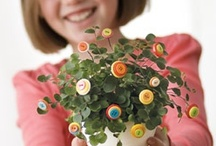crafty projects / by nora fleming