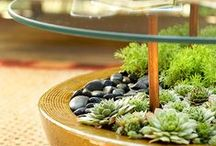 Home- Garden and Around / Gardening, tips, decor and everything related to the outdoor surroundings / by Craftionary . net