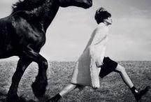 HORSES, HORSES, HORSES / by Tiziana Dominguez