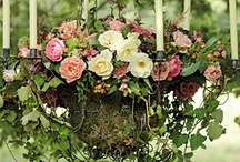 Outside * Garden / ideas projects for outside / by Bridgett Jones