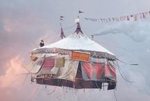 Circus / by Fulvia Muntoni