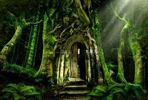 doors / by Amy Villarreal