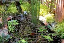 garden / by terry mulhern