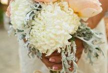 Wedding / by Ashley Hartlen