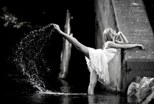 So Dovish / by Marisa Robb