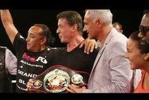 World Kickboxing Network / by Fightmag.net