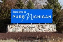Purely My Michigan / by Nancy Roggenbaum