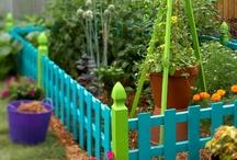 Gardening / by Sara Akers