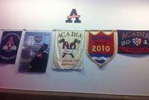 Acadia Students' Union / by Acadia Students' Union