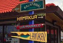 Oahu-Hawaii / by Julie Owen