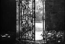 Secret Garden / by Ashley Minette