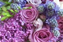 'Floral / by Audrey Merchant