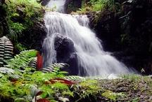 """Beautiful Scenery/ Waterfalls / by Audrey Merchant"
