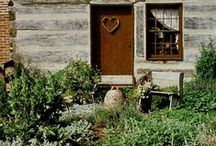 gardens/gardening / by Denise Longenecker