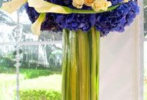 Deep Blues and Cool Hues / by Black Orchid Florists