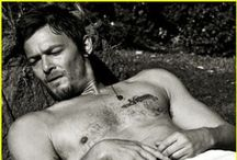 Norman / by Nikki Cadle