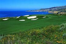 Golf / by Patricia LIPFORD