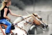 Barrel racing / by Sheyania Hughes