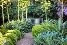 Garden Ideas / by Beth Hale