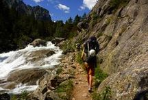 Hike Montana! / by FOX 28 - myfoxspokane