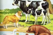 Farm / Animals & buildings / by Danny Caesar