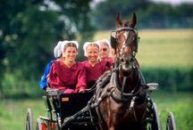 Amish Ways / by Georgina Arnold