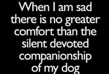 Dog Quotes / Whether funny or serious you'll give a tail wag of approval when you read these dog quotes.  / by Dog Names and More
