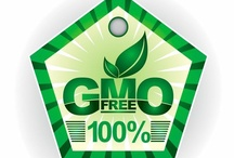 Monsanto & Other GMO-Grown Products / by Julie Harnisch