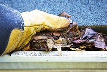 Home Maintenance and Improvement Tips / Valuable hand selected home maintenance and home improvement #tips to help save you money and take care of your most valuable investment, your home. / by MC2 Home Inspections