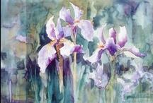 Iris / by Meg Seddon