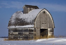 Cool Barns / by Mary Flint Vandenabeele