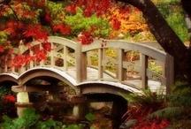 Bridges to somewhere / by Mary Flint Vandenabeele