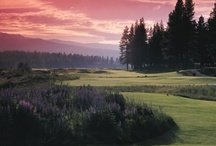 Golf in Plumas County / by Plumas County Tourism Council