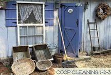Farm life / by Sandra Carney
