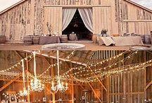 Our Wedding ❤️ / by Morgan Brandt