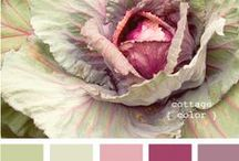 ~ color palette  mood board / issue two ~ / by Gold Dust Woman