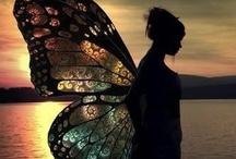 fairies / by mahesh motiani