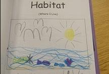 Kindergarten Language Arts / by Baleigh Davis