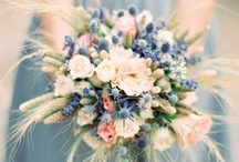W e d d i n g ~ I n s p i r a t i o n / Rustic, country, vintage... I want to decorate the tables with drift wood and stone. I have collected lots of antique bottles for wildflowers. We want hay bale seating for the ceremony. I want to grow a bunch of love in the mist to decorate all over. Don and Sharron have offered to give us a bunch of wine barrels. I need to decide on table cloths, but will do that once I know how many guests there are. / by Elle